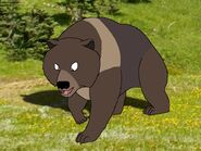 Rileys Adventures Tibetan Blue Bear