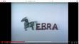 Sesame Street Zebra