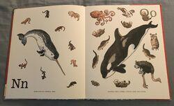 8- An Animal Alphabet (8).jpeg