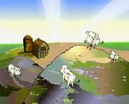 TN Cattle