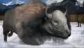 UTAUC Bison