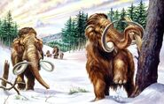 Woolly Mammoths Are Impressive