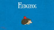 Bonny Wondy Hedgehog