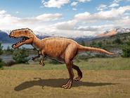 Dm tarbosaurus