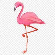 Flamingo On Stump