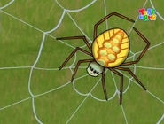 Mama Mirabelle Spider