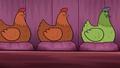 TTG Chickens