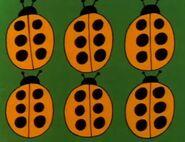 6-ladybugs-fmafafe