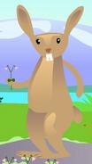 Hare01 mib