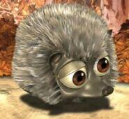 Hedgehog jungle beat