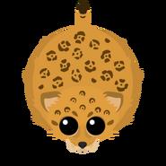 Mopeio Jaguar