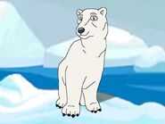 Rileys Adventures Polar Bear