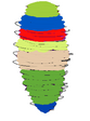 Treelo spinning