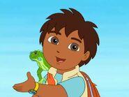 Go Diego Go Green Iguana