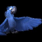 Rio-2-Blu-Icon-2