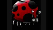 Safari Island Ladybug