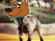 Scrappy Doo as Toto