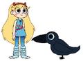 Star meets Common Raven