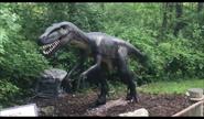 Dinosaurs Alive! Deinonychus