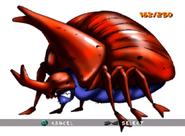 Rhinoceros Beetle ty-the-tasmanian-tiger