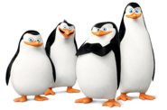 Skipper, Kowalski, Private and Rico (Dreamworks)