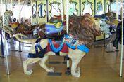 St. Louis Zoo Carousel Lion