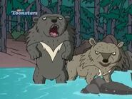 TWT Asiatic Black Bears