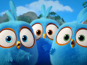 Angry-birds-blues.jpg