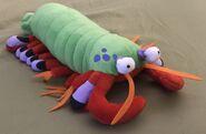 Harlequin the Peacock Mantis Shrimp
