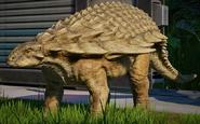 JWE Nodosaurus