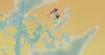 Melody flies away