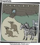 Noah's Ark Aardvarks Zebras and Elephants