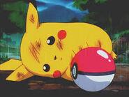 Pikachu, please get inside