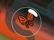 SBSQ Butterfly