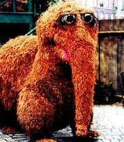 Snuffy in Sesame Street.jpg