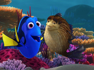 Sykes and Dory