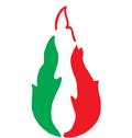FNI Logo.png