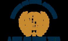 Institute for Global Awareness.png