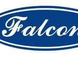 Falcon Car Company