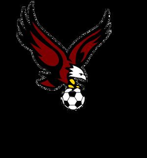 TFSL logo.png