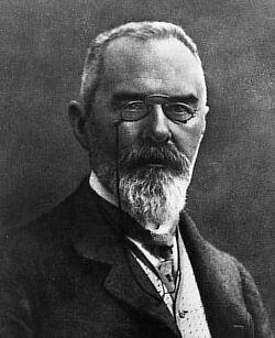 Bartholomäus von Strauss