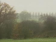 Swaffham countryside