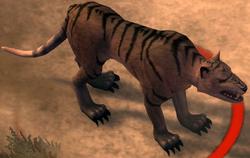Thylacine.png