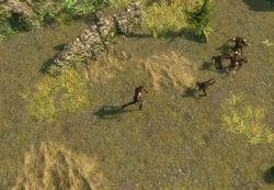 The Old Fields area screenshot.jpg