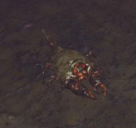 Bestiary shield crab.jpg