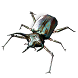 Beetle Pet inventory icon.png