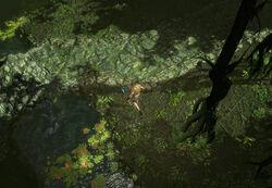 The Riverways (Act 2) area screenshot.jpg