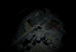 The Lower Prison (Act 1) area screenshot.jpg