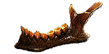 Valako's Jaw inventory icon.png