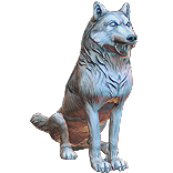 White Wolf Pet inventory icon.png